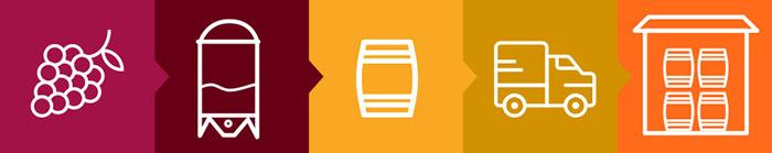 filiera-vino-spina.jpg#asset:695
